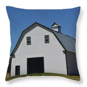 Well Preserved Barn Throw Pillow