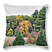 Wellesley College Campus Throw Pillow