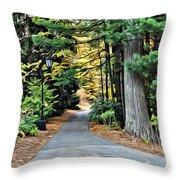 Wellesley College Walkway Throw Pillow
