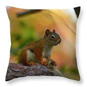 Wellfleet Red Throw Pillow