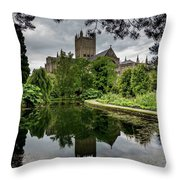 Wells Pond Throw Pillow
