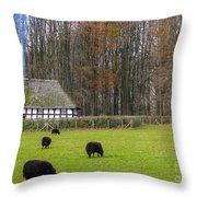 Welsh Farmhouse Throw Pillow