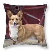 Welsh Pembroke Corgi Dog Outdoors Throw Pillow