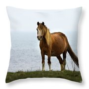 Welsh Pony  Throw Pillow