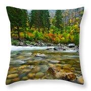 Wenatchee River Throw Pillow by Dan Mihai