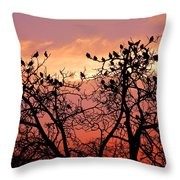 Wente Road Sunset Throw Pillow