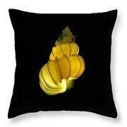 Wentletrap Seashell Throw Pillow