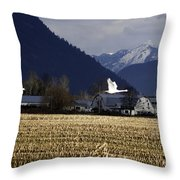 Were Outa Here Throw Pillow