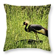 West African Crowned Crane Throw Pillow