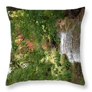 West Branch Of The Rifle River Throw Pillow