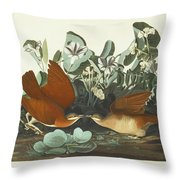 West Dove Throw Pillow