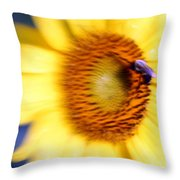 West Flow Throw Pillow