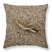 West Texas Hopper Throw Pillow