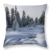 West Thumb Snow Pillows Throw Pillow