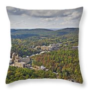 West View  Throw Pillow