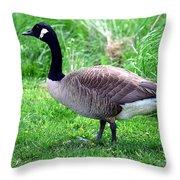 Westcreek Reservation 1 Throw Pillow