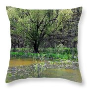 Westcreek Reservation 12 Throw Pillow