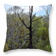Westcreek Reservation 6 Throw Pillow