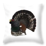 Western Capercaillie Transparent Throw Pillow