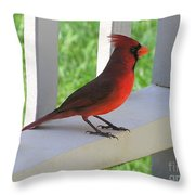 Western Cardinal Throw Pillow