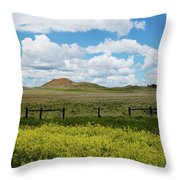 Western Color Throw Pillow