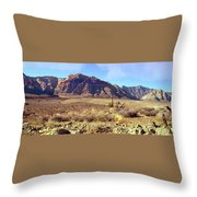 Western Desolation Throw Pillow