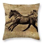 Western Flair Throw Pillow