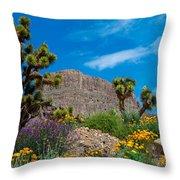 Western Grand Canyon Area Throw Pillow