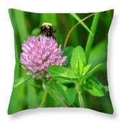 Western Honey Bee On Clover Flower Throw Pillow