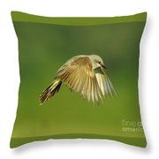 Western Kingbird Hovering Throw Pillow