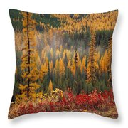 Western Larch Forest Autumn Throw Pillow