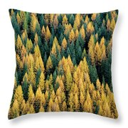 Western Larch Forest Throw Pillow