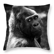Western Lowland Gorilla Closeup Throw Pillow