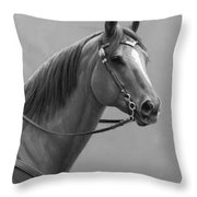 Western Quarter Horse Black And White Throw Pillow
