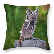 Western Screech Owl Throw Pillow