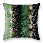 Western Sharp Throw Pillow
