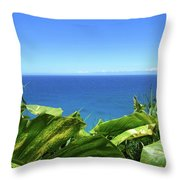 Western Shore Kauai Throw Pillow