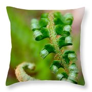 Western Swordfern Three Throw Pillow