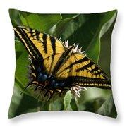Western Tiger Swallowtail 2 Throw Pillow