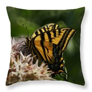 Western Tiger Swallowtail Throw Pillow