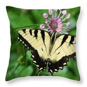 Western Tiger Swallowtail Throw Pillow