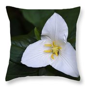 Wildflowers Western Trillium Oregon 1 Throw Pillow