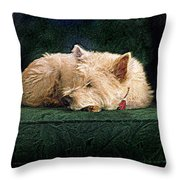 Westie Nap Throw Pillow