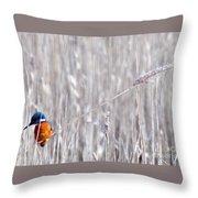 Weston Kingfisher Throw Pillow
