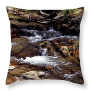 Rocks And Water In Autumn Throw Pillow