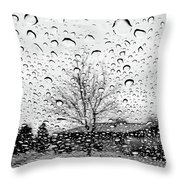 Wet Car Window B Throw Pillow
