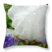Wet Flower Raindrops Art Iris Flower Spring Baslee Troutman Throw Pillow
