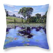 Wet Land - Shaw Nature Reserve Throw Pillow