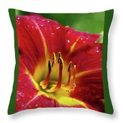 Wet Lily Throw Pillow