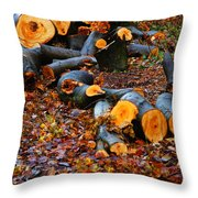 Wet Logs Throw Pillow